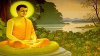 1402苏心:一直善良下去,终会一路芬芳。佛教教育短片 欢迎转发 功德无量(深信因果 常念弥陀 消灾解难 往生极乐)阿弥陀佛