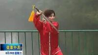 徐勤兰陈式太极单剑教学 6闭门式 7青龙出水 8翻身下劈剑