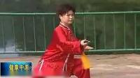徐勤兰陈式太极单剑教学 9青龙转身 10斜飞势 11展翅点头