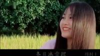 频道主题曲《瑞香艾叶草》(专题音乐)