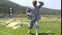 少林大洪拳实战《释德扬》《中映良品》