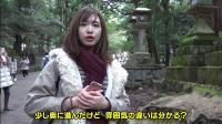"""奈良小鹿还有隐藏的一面!?台湾女生寻找""""神的使者""""【惊奇日本】"""