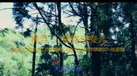 柳岩 - 情路透春光