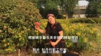 当代空竹 南京童冬英老师最新动作《360转体连续脱线》