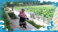 梧州潘塘公园花如景 <遇见仙居>原创编舞 景美人美舞美_20200713