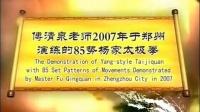 少帅傅清泉85式传统杨式太极拳演练,2007年于郑州。_标清