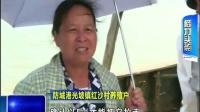 防城港:受损蚝排开始认领 相关部门全力抢收 140721新闻在线.mp4