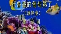 《吐鲁番的葡萄熟了》E调伴奏 远征的歌 2020.8.14.