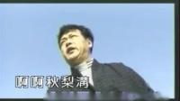 狱中望月 迟志强 MV版