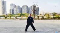 新编28势太极拳第三段分解教学