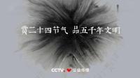 赏二十四节气 品五千年文明广告(河南卫视)