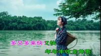 20浙江民歌01《采茶舞曲》MTV 演唱:李玲玉