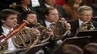 我们决不畏惧快速波尔卡作品413号 - 86年新年音乐会指挥洛林·马泽尔(C Y试音版)