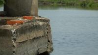 蓝旗鱼路亚 | 蹦虾路亚狂上大鳊鱼,这让玩手竿的钓友情何以堪?