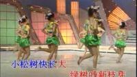 儿童歌伴舞 鲁冰花 4-14