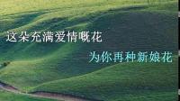 小小的新娘花 翻唱 壹片雪花 粤语.avi