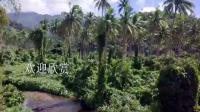 大洋洲斐济岛屿游船海水度假11683