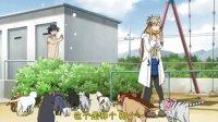 猫愿三角恋 12 end