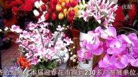 梅州市第二十八届迎春花市