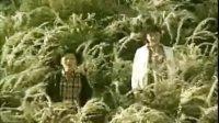 [杨晃]奶茶刘若英后来原曲冲绳女子二人组合kiroro 未来
