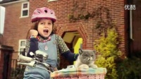 萝莉和猫咪的合唱