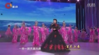 《百花迎春》--中国文学艺术界2016春节大联欢