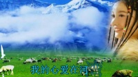 民歌精粹  呼伦贝尔大草原    口琴版.mp4