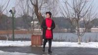 安庆菱湖公园赏雪(2018年元月29日下午  摄影:杨积华)