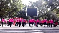 艾尼丽清姐妹原创广场舞(快四:爱情缘)步子舞