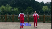 邵东昭阳公园健身早操二套教学视频