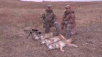 狩猎秃鹰减震快排B50战术pcp 高原远程狙击目标 身临其境