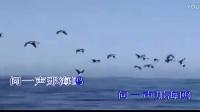 彩云伴海鸥-电视剧《海鸥飞处彩云飞》主题曲