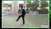 隆重推出天津石磊教练2020年倾心打造最新动作《蜂舞指路1》