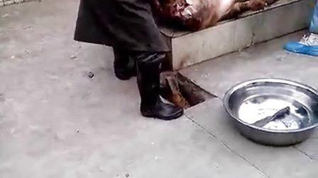【邓羽】厂里团年杀猪视频