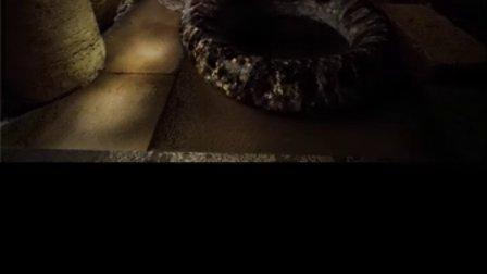 C4D电影级别恐怖的蛇