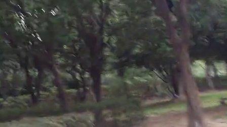 义乌绣湖公园小学生偷东西