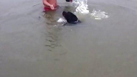 教我家龙龙游泳