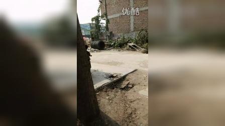 VID20141018122906蔡翔任固会玩土等爸爸