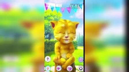 赵云视频会说话的金杰4