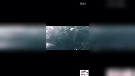 20160620阿拉丁,大青海钓铁板章红