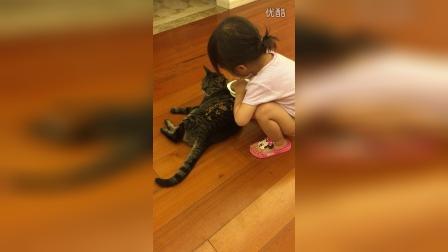猫咪来家里