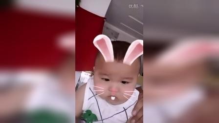圆梦宝宝代苡菲
