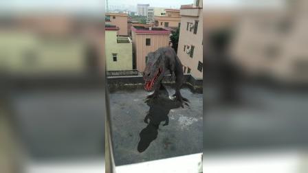 屋顶上来恐龙了