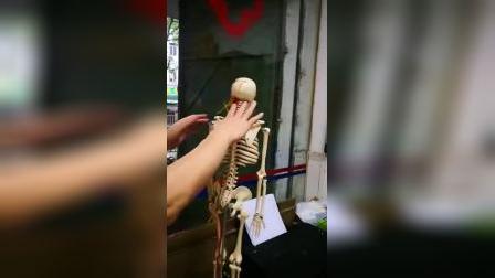 康复专家李仕如介绍颈、腰椎知识