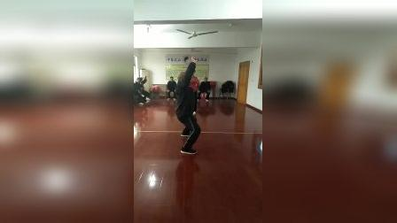 2017年12月江苏溧阳八极拳培训班上韩来魁慢练演示--刚柔并济势劲合一老少皆宜