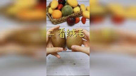 猕猴桃和奇异果究竟有什么区别?你可别买错了!
