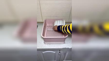 买了这个收纳架,不仅放的干净,拿取方便,还能沥水