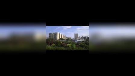 宁局火车视频25(车内场景)