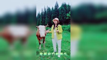 贵州山歌王琴琴