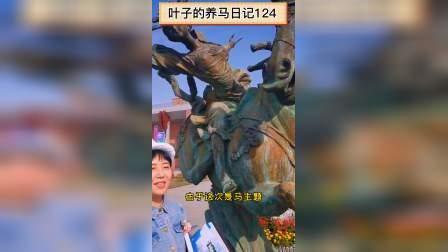 叶子的养马日记124-走近安平马术节